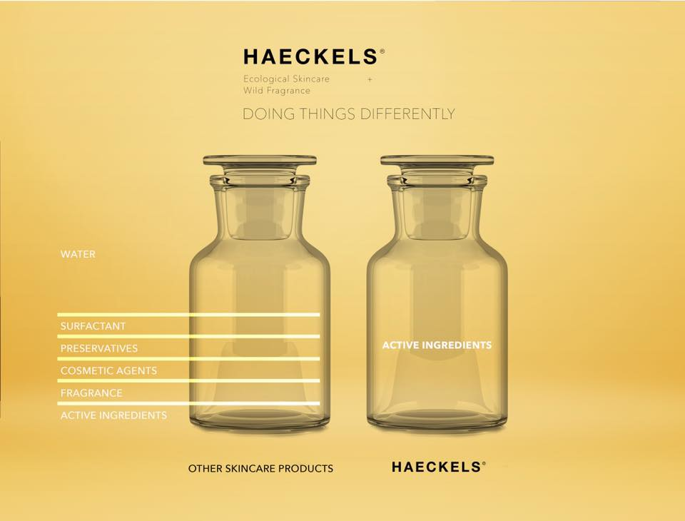 reshaping sustainability: the Haeckels approach